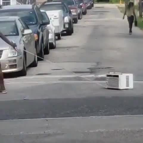 """homeless minor Lapwing. .. So here is a little pearl from Czech gold archive of """"jokes"""" Small boy is walking on the sidewalk and pulling a brick on a string. Each time he stops"""