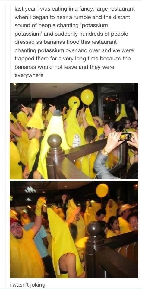 A Potassium Party. . last year i was eating in a tangy, large restaurant when i began ts hear a rumble and the distant seend as pebble shaming lilili and ' hund