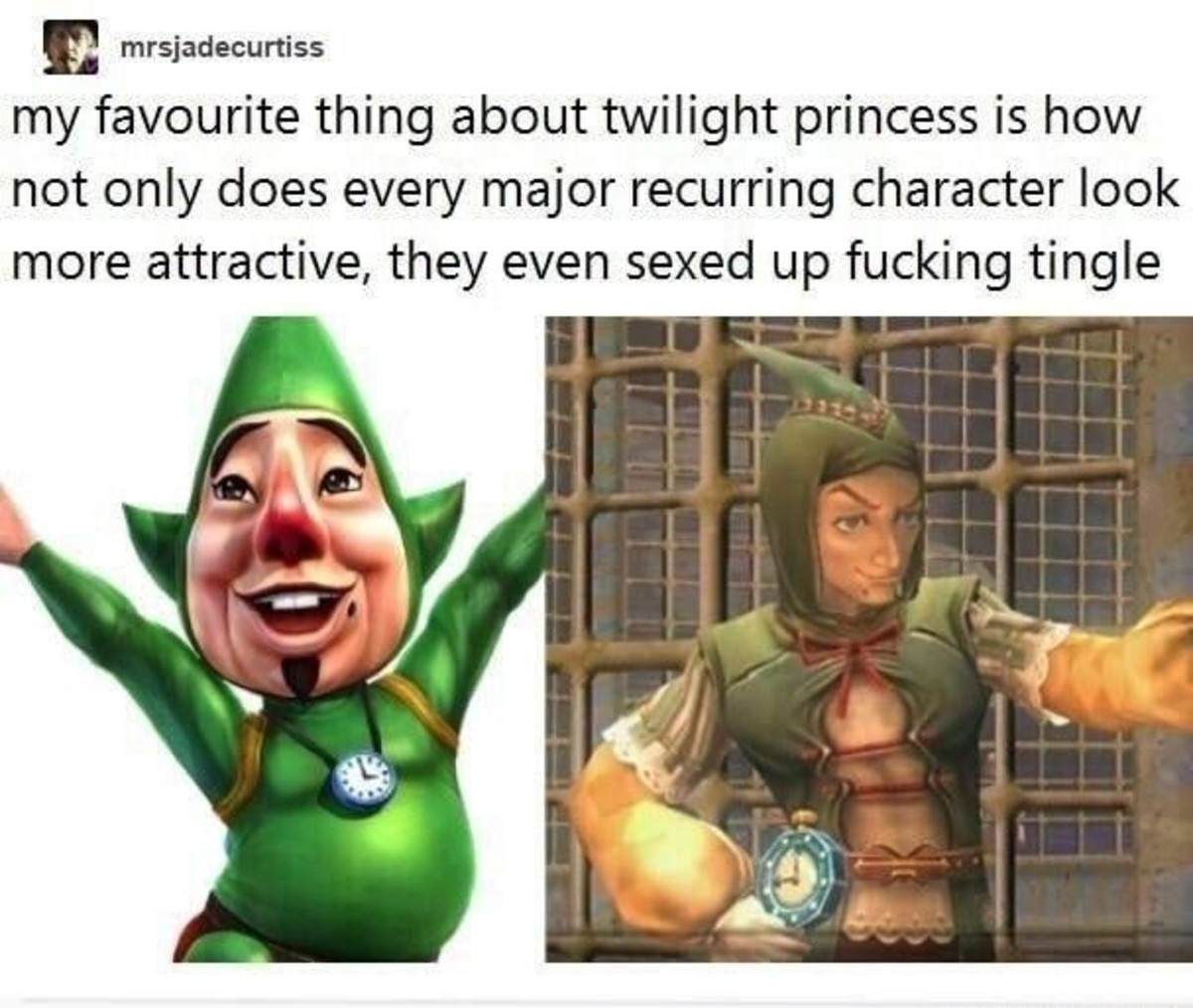 adjoining murky gullible Jellyfish. .. me, TP was my first and is still my favorite zelda game, I really wanna see a proper HD remake, not just a Wii U adaptation