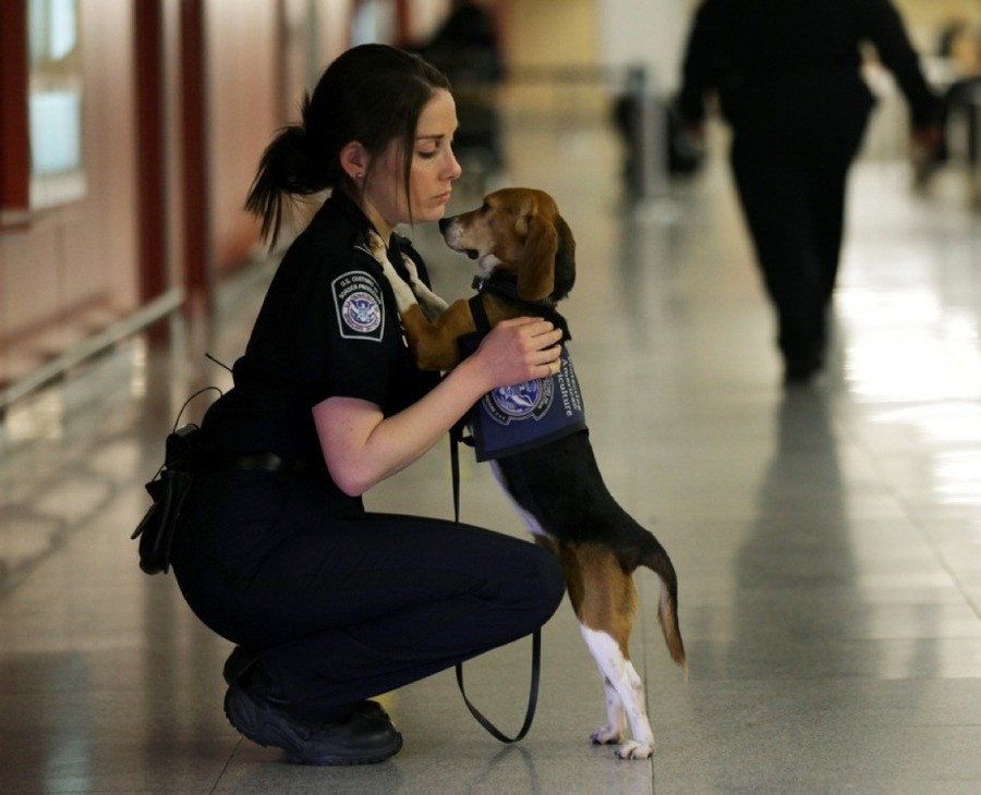 An officer and her partner. .. That's a fine bitch. The dog is also pretty cute.