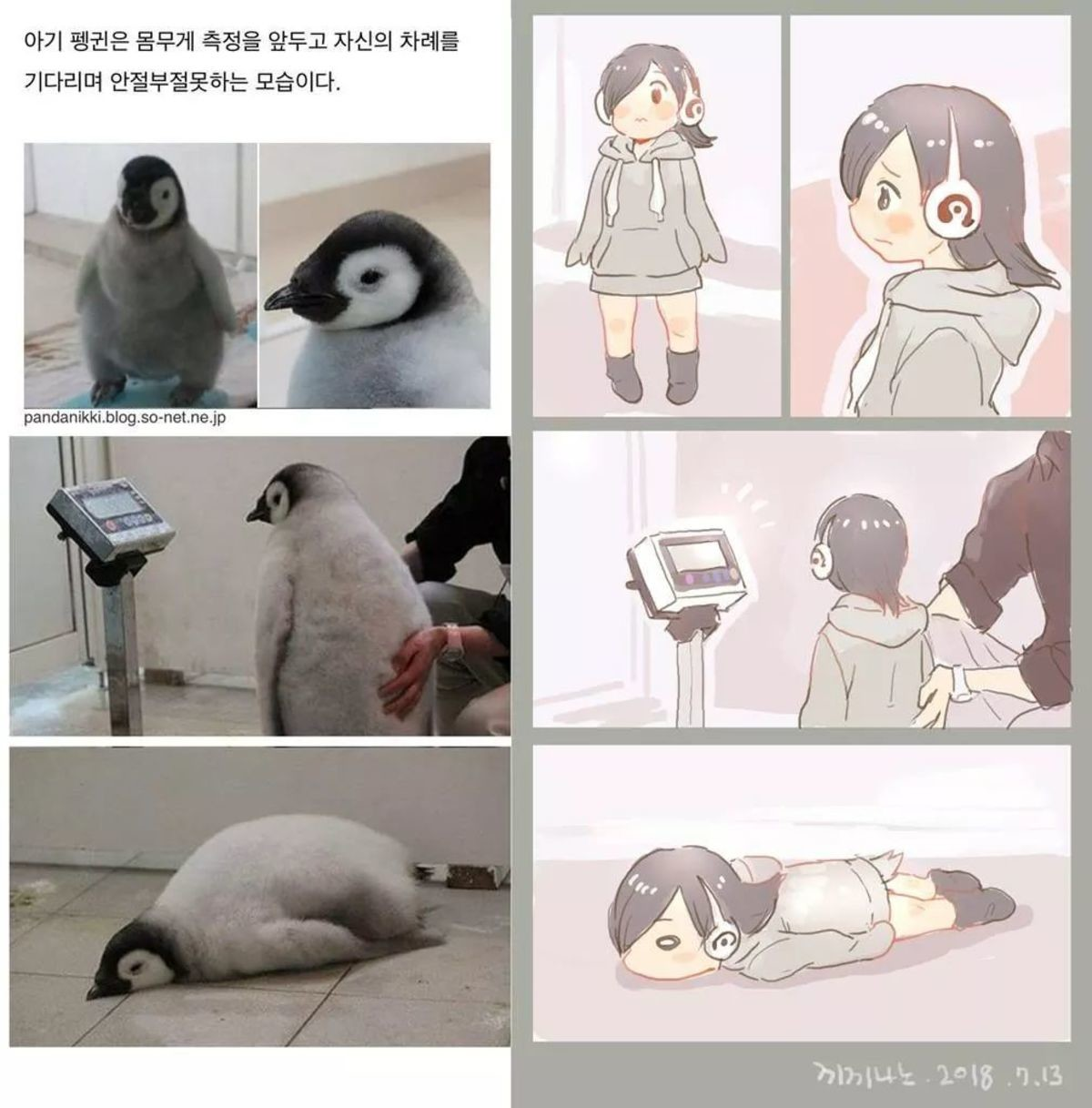 Baby Pengu. join list: MonMusuManiacs (1575 subs)Mention History join list:. i can't it hurts too much