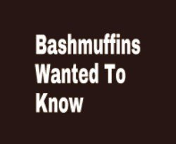 Bashmuffins,You Asked. . Wanted To new. No one in my family knows the meaning of our last name. All we know is two things 1) we were polish-Russians 2) our family fought in WW1 for Russia, Germany, an