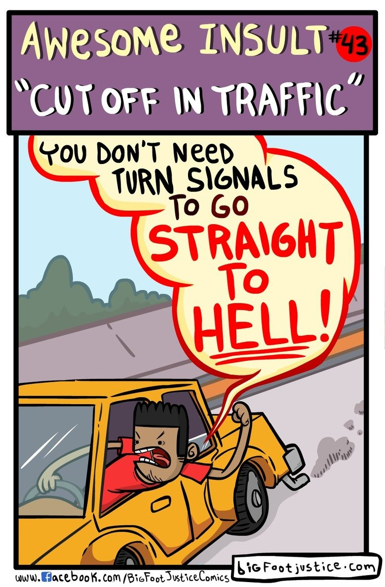Best Road Rage Insult. .