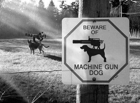 BEWARE OF MACHINE GUN DOG. machine gun dog FTW.. just found chuck norris' house nice sign!