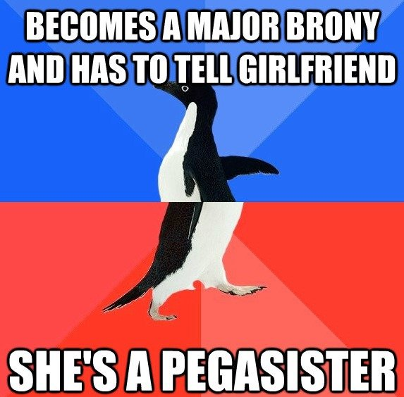 Brony + Pegasister = Epic. Thanks, Emily, for accepting my liking MLP.. BECOMES ll MAJOR HAS [Ell. I'm a female Brony and I hate the term 'Pegasister'. I'd rather just be called a Brony. There's no need to segregate the community based upon what gender an ind