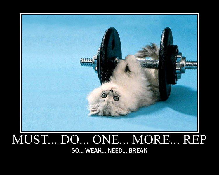 Buff Kitten!. TEE HEE.. Hear me now und believe me later!