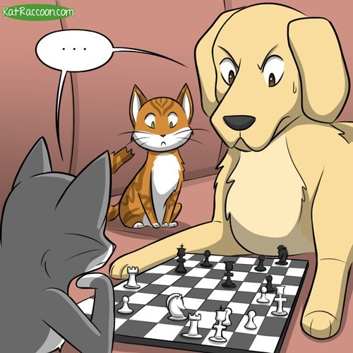 Chess with cat and dog.. join list: CartoonGIF (429 subs)Mention Clicks: 13561Msgs Sent: 51940Mention History Credits: katraccoon. Aw, jeez, looks tike yer scre