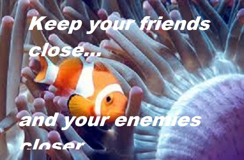 "Clown Fish Pun. Good 'ole OC made by me.. hope you guys find it punny! Hmm.. +10 for moar? Edit: Sorry for misspelling ""anenomes"".. too lazy to go bac"