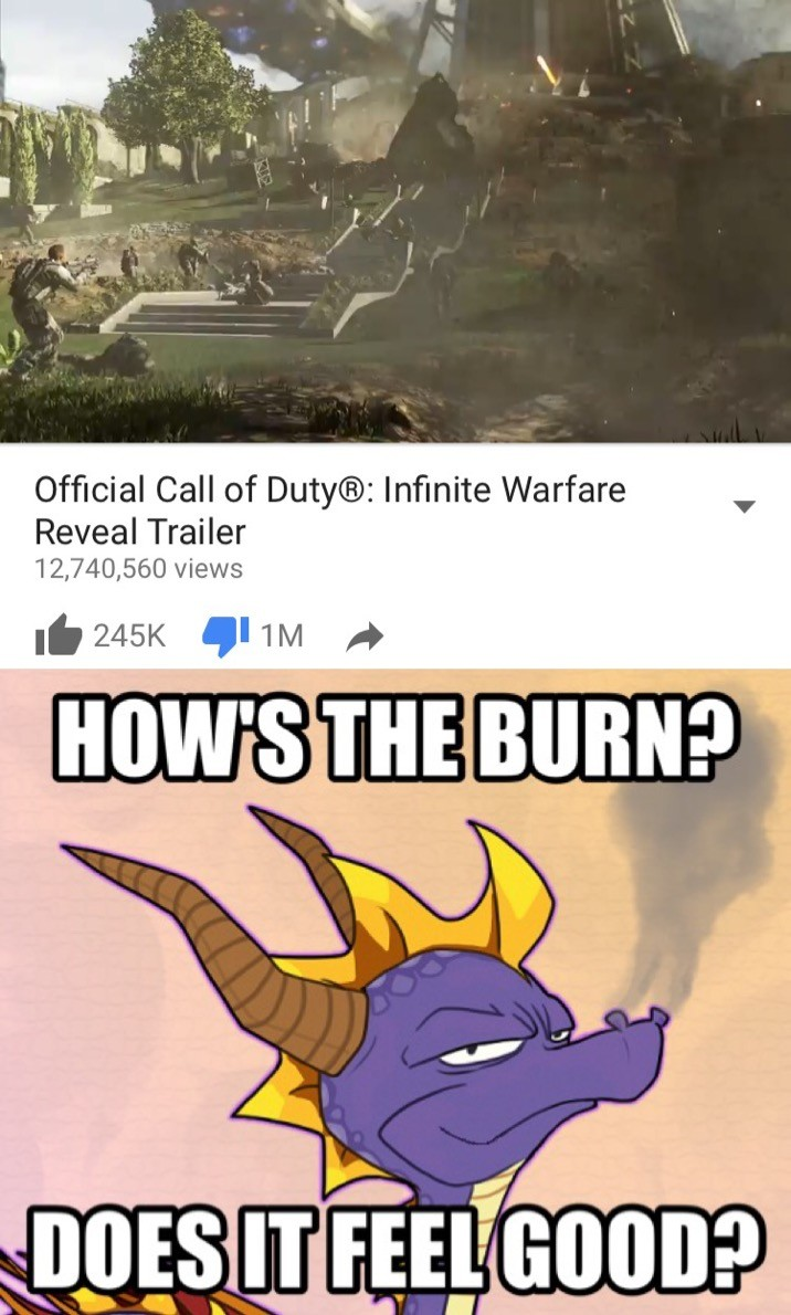. Gg, . You set a world record for pissing off Spyro fans, and now you've set a world record for pissing off your own COD fans. XD. O