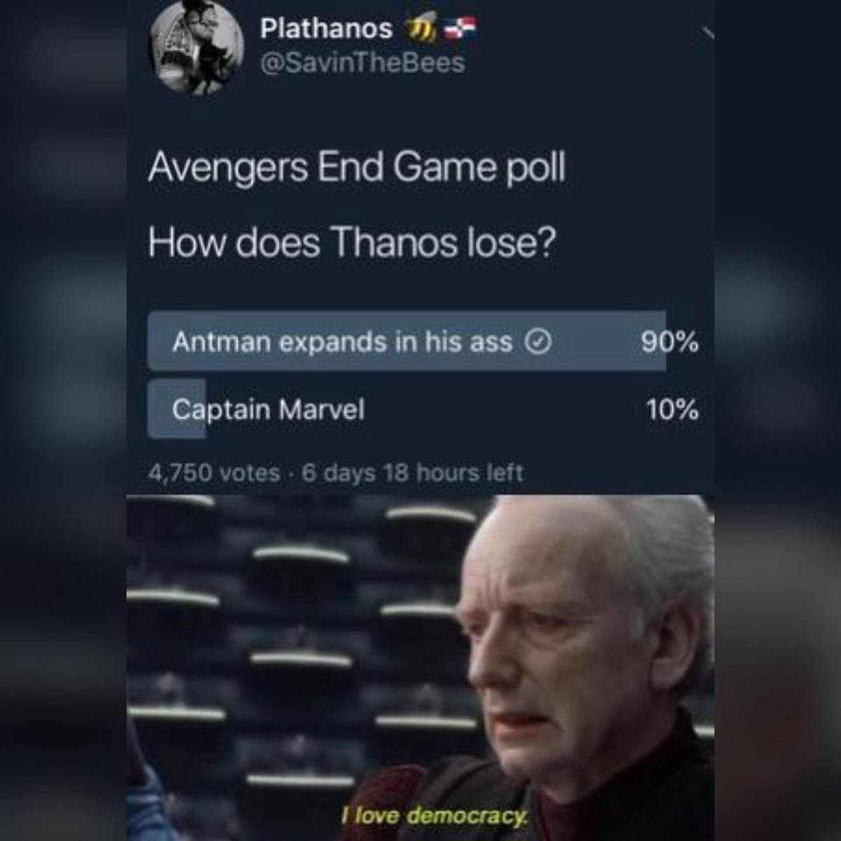 Endgame. .. Yeah, cuz that's what I want to see The Avengers get sidelined in their greatest challenge by a hero we've seen in literally one movie.