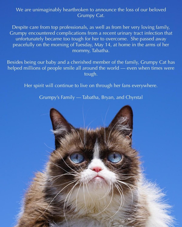 Farewell tardar sauce. https://twitter.com/RealGrumpyCat/status/1129310647458467840.. Poor kitty. Find peace until you reincarnate.