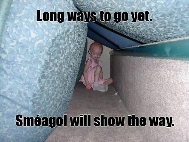 follow me!. lotr ftw!. I Jr. I know I shouldn't have laughed but I did...poor kid..