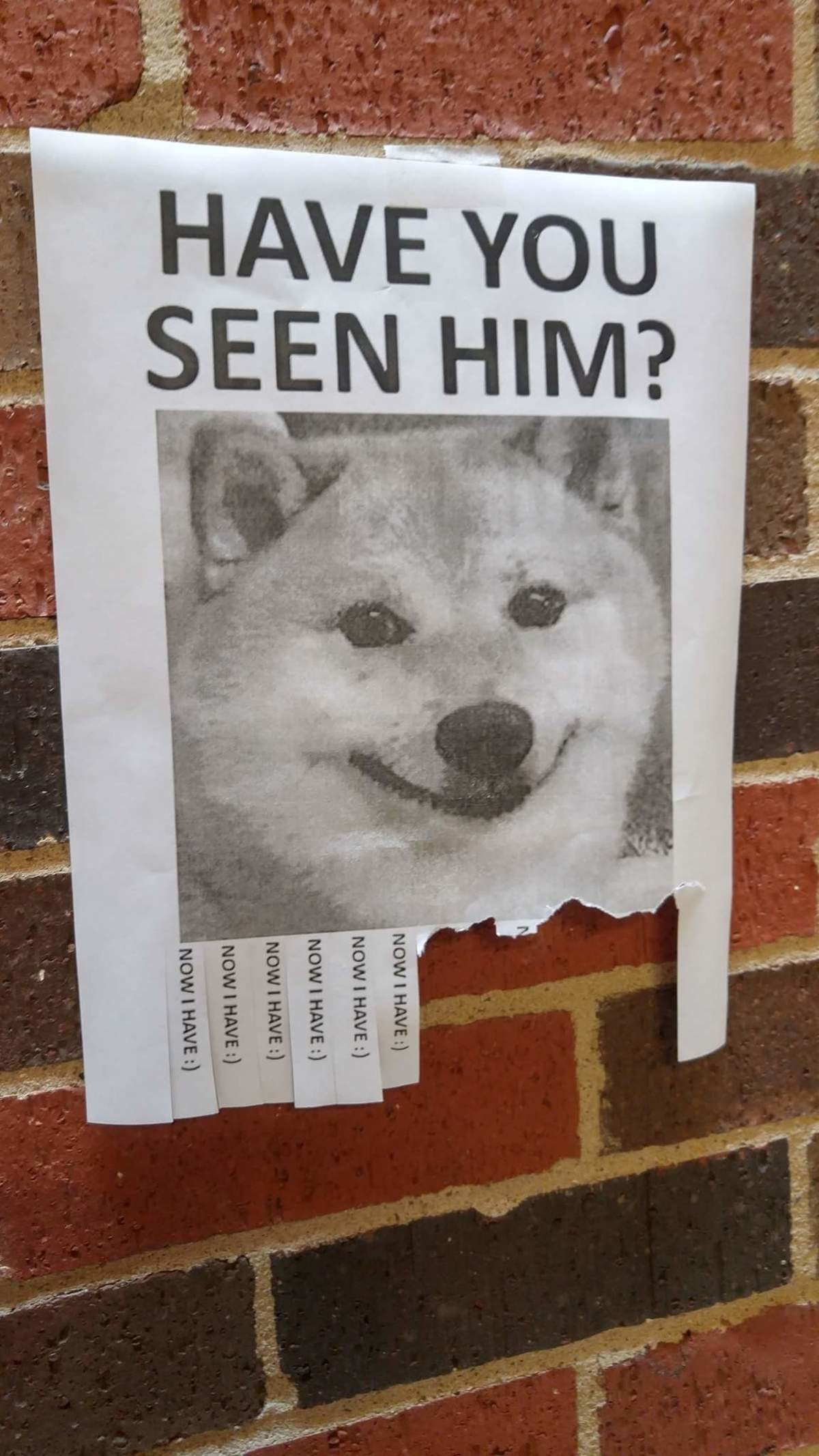 Have you seen him?. .. now i have