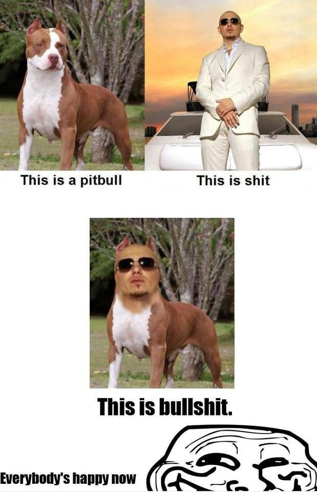 Hope you are happy now. . This is a pitbull This is shit This is bullshit. MEN Milli
