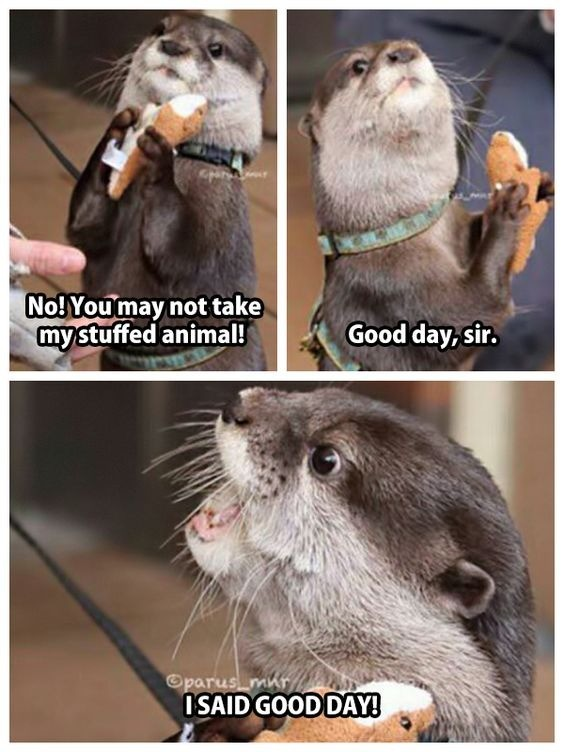 I Said Good Day!. .. So cute, give the tiny animal even moar tinier animals!