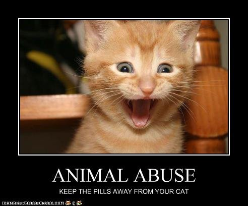 I think I took too many, !!!. . KEEP THE PILLS AWAY FROM CAT