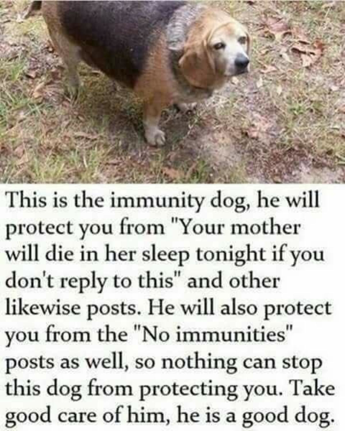Immunity. .. If I see one of those posts, I'll just pull out my trump card