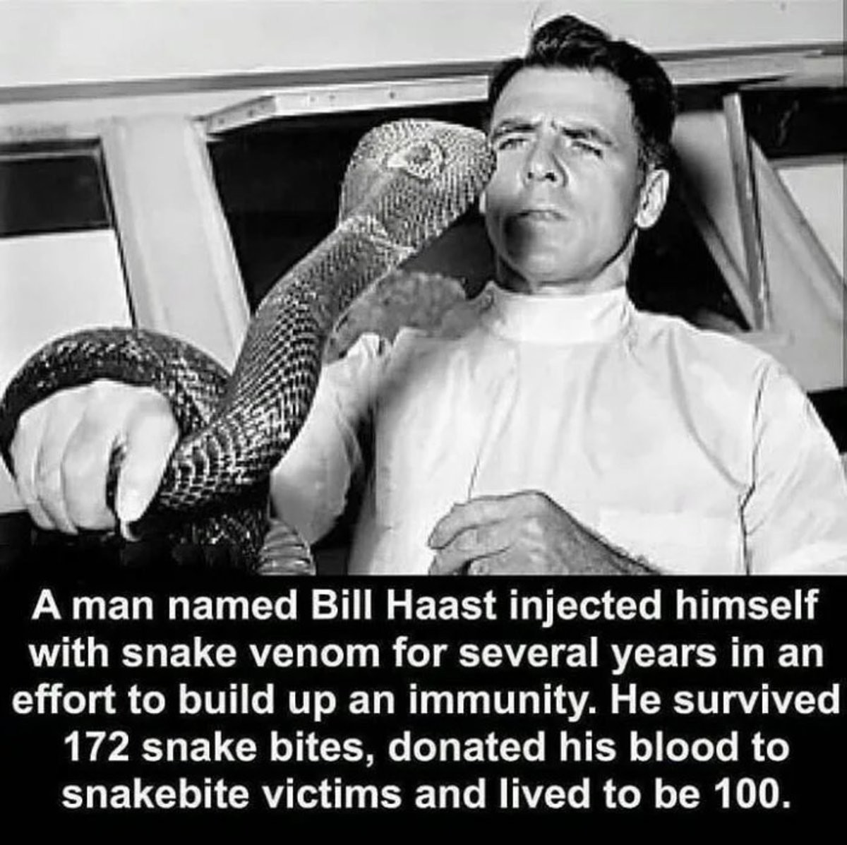 """""""Immunity"""". .. The secret to immortality was snakes all along!"""