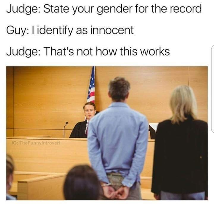 It doesn't?. .. That judge is so American he's got a flag growing out of his head!