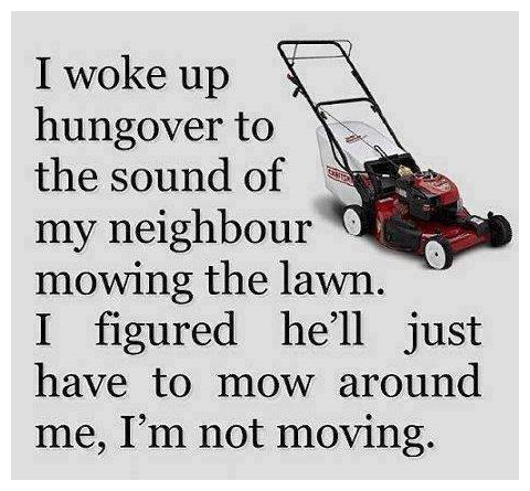 """""""It's too early for this """". . I woke up 7 hungover to '. 'E: the sound of """" j my neighbour 9- . 'aw, mowing the lawn. I figured hell just have to mow around me,"""