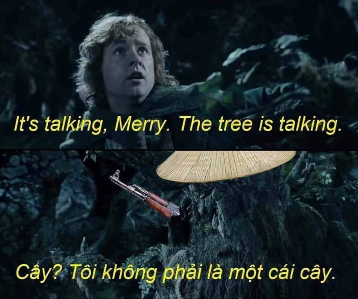 nam. .. Translation: Tree? I am not a tree.