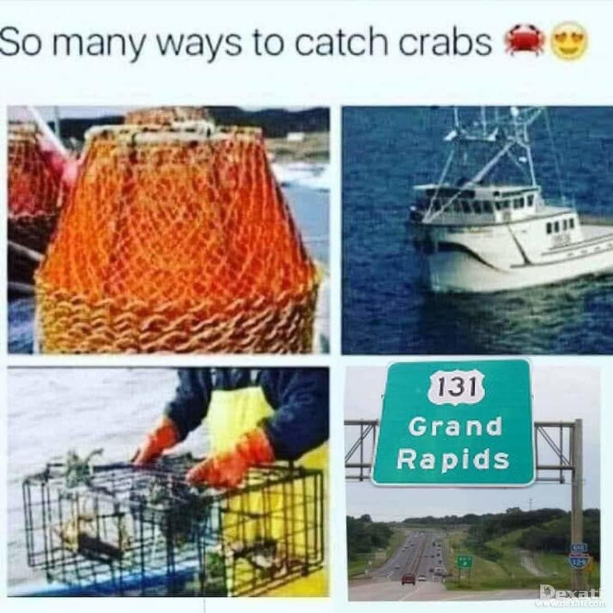 paltry mean standing Elk. .. Crabs? Grand Rapids?