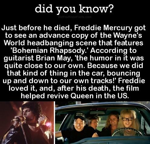 Party On Freddie. .