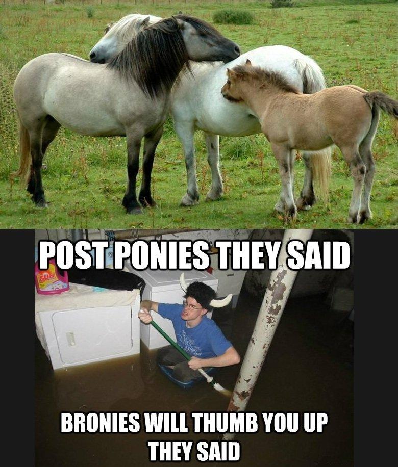 """Ponies!. . Wm THUMB """" Ill' THEY SAN]"""