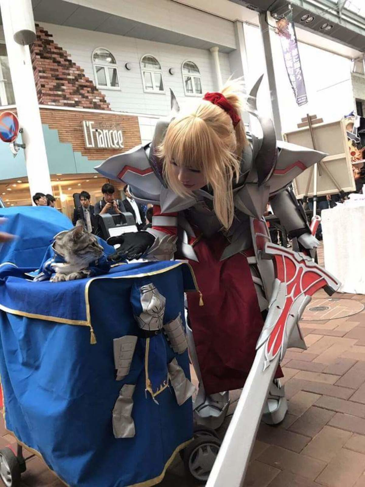 Saber Lion Irl. join list: Lewds4DHeart (1586 subs)Mention History join list:. Smug as
