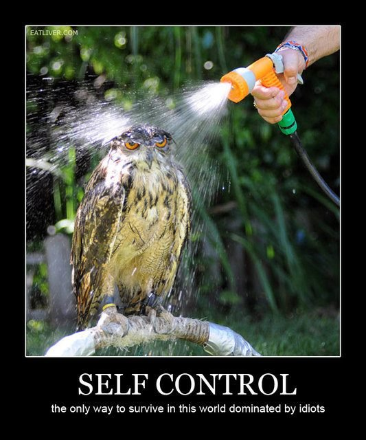 Self Control. . SELF CONTROL the only way to survive in this world dominated by idiots