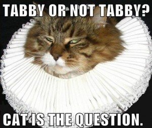 Shakespeare's Cat. A meme I did for an article at my new work (The article if you like ).