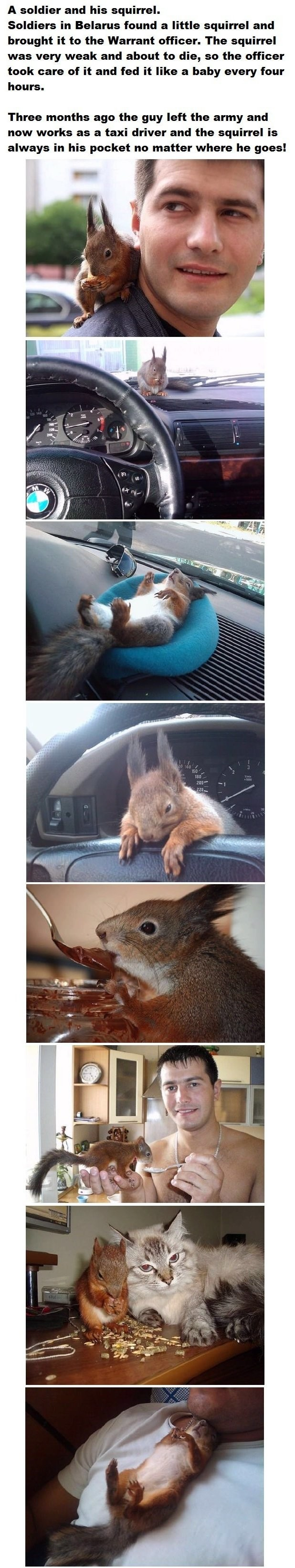 Squirrel Bro. join list: CuteThings (149 subs)Mention History.. The squirrel seems to be everywhere but his pocket