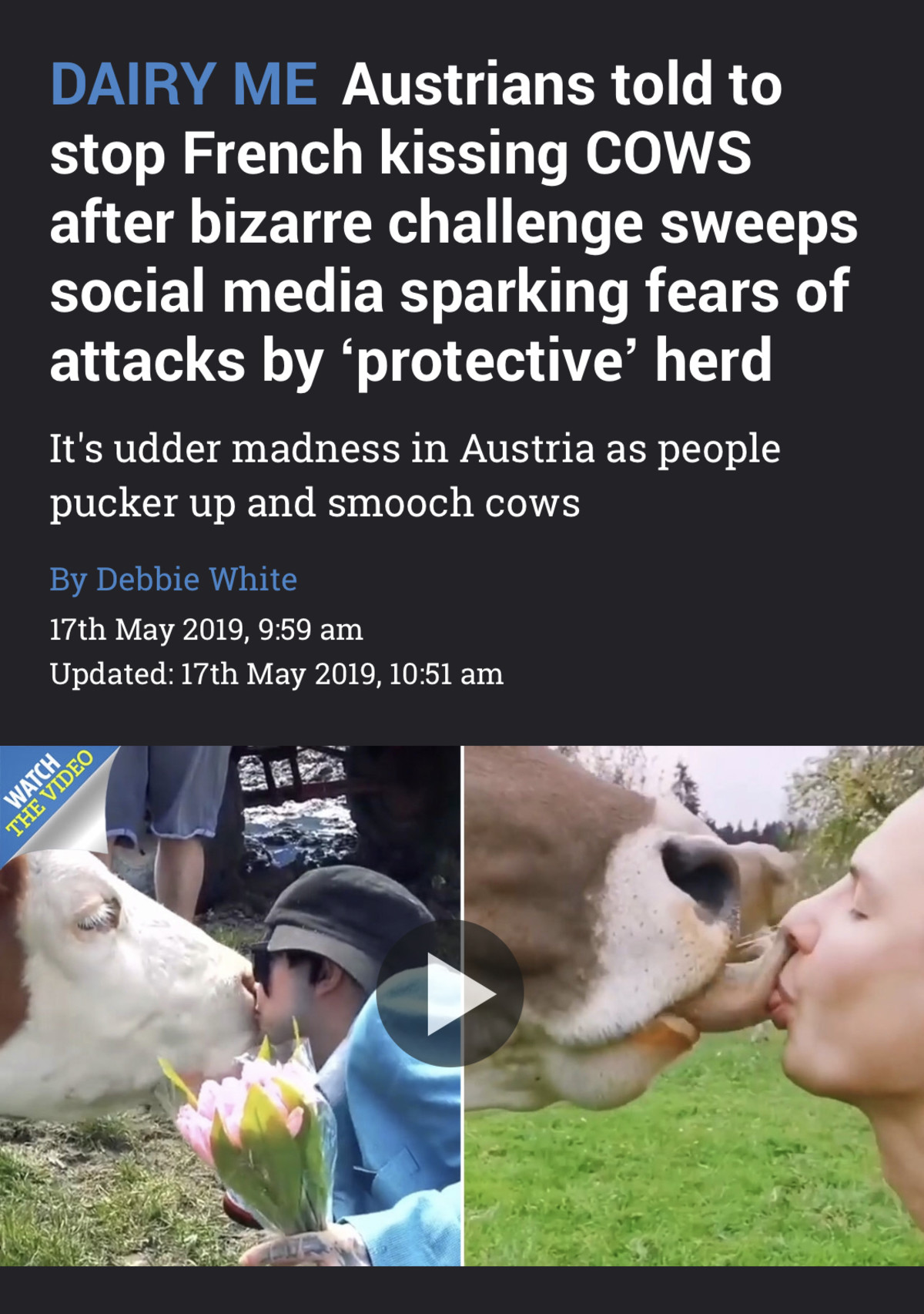 """Tongue tied. https://www.thesun.co.uk/news/9094938/austrians-told-stop-kissing-cows-bizarre-challenge-social-media-health-fears/.. Suddenly cow smooching is acceptable cause it's a """"challenge"""" ....hypocrites"""
