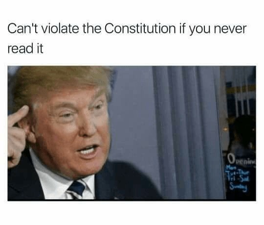 Truest of Memes. https://www.indy100.com/article/donald-trump-theory-cant-read-illiterate-david-pakman-7567481. Can' t violate the Constitution if you never rea
