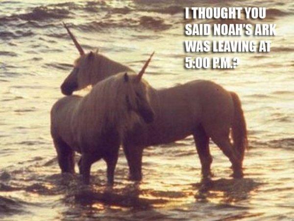 Unicorns and Noah's Arc. Dang it.. HUME