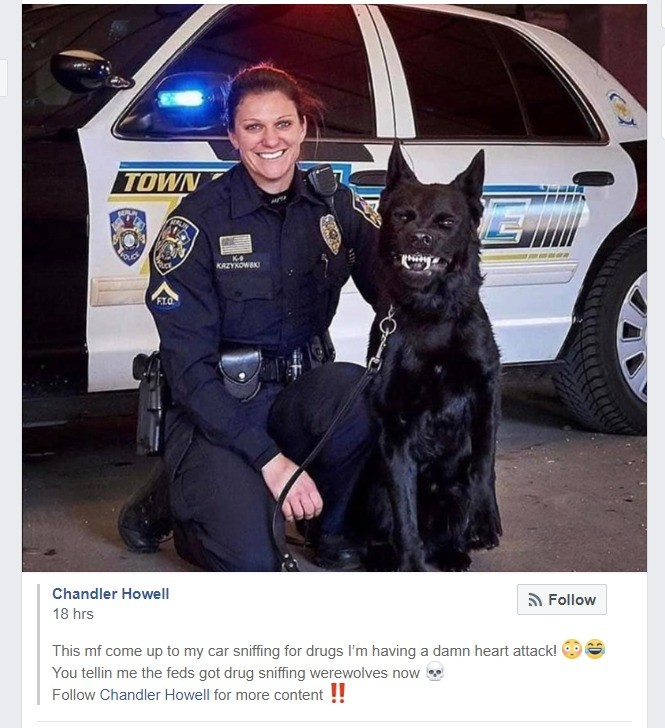 what would you name him. .. Possible unpopular opinion. I think drug dogs and k9 units are bad or I should say I disagree with their use -drug dogs can give false positives based of the ha