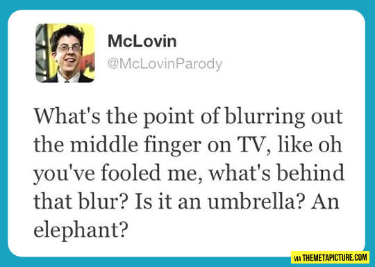 What's the point?. Seriously. He's right. Funny tweet. At least I thought so.. Mclevin What' s the point of blurring out the middle finger on TV, like oh you' f