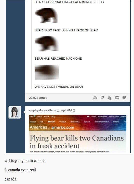wtf canada?!. .. Canadian award-winning novel about a women a bear.