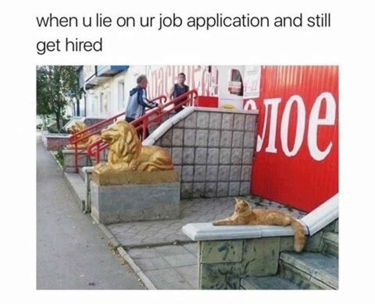 ЛОЕ. .. That was basically me, i lied and said i had a year of experience at a place that closed down recently so they hired me