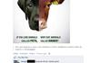 Facebook (69)