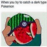 Gotta catch'em all
